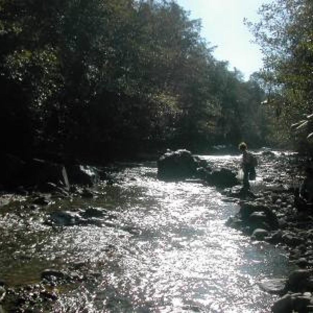 fiume-pavone-passeggiata