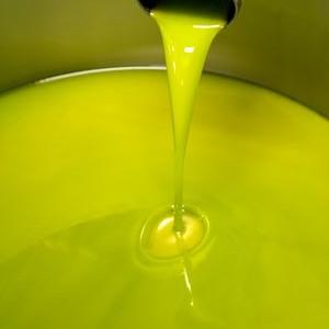 olio-extravergine-bio Agriturismo Apparita