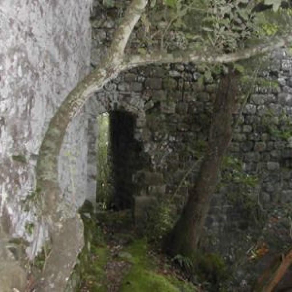 riserva-di-berignone-a-pomarance-castello-dei-vescovi-arco
