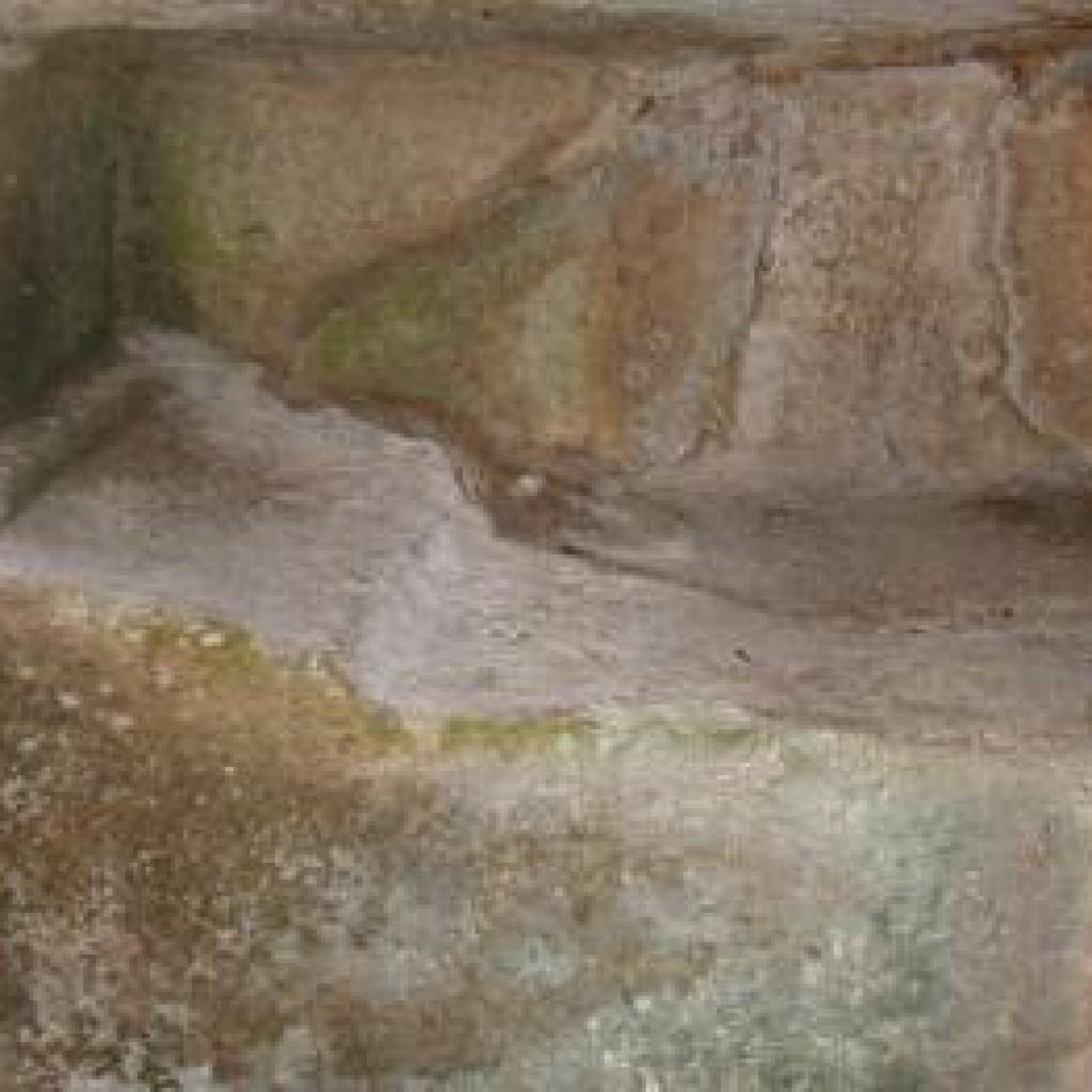 tomba-etrusca-buca-delle-fate-2