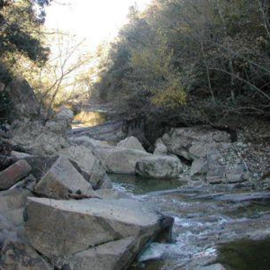 torrente-rivivo-monterufoli-1